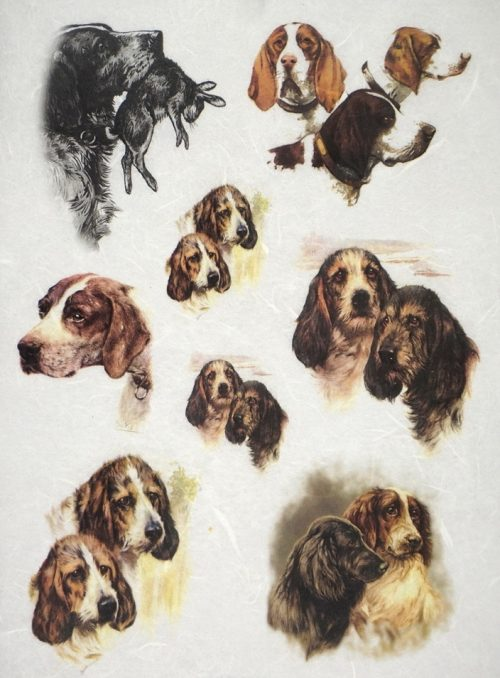 Rice Paper - Dogs