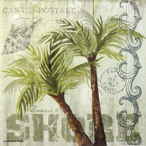 Lunch Napkins (20) - Palm Trees