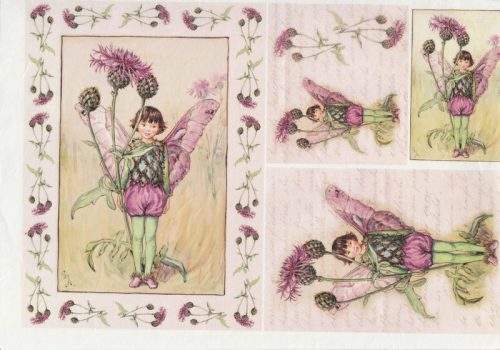 Rice Paper - Greater Knapweed Fairy