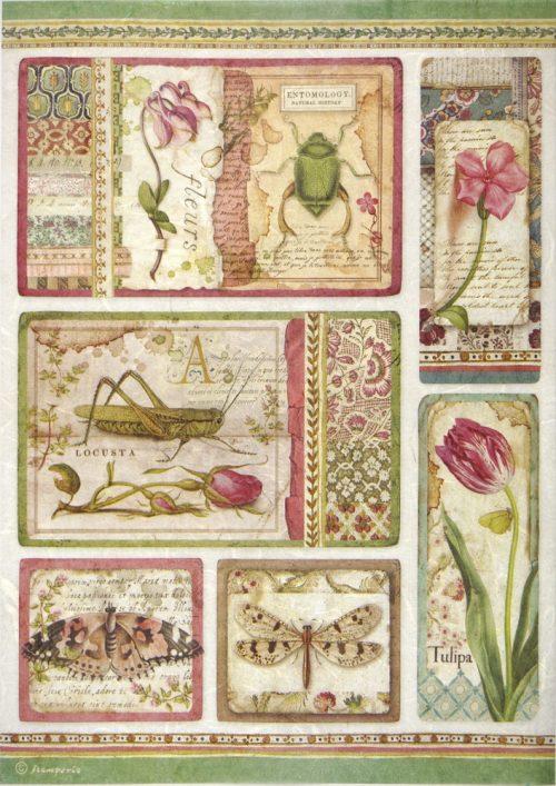 Rice Paper - Botanic Cards
