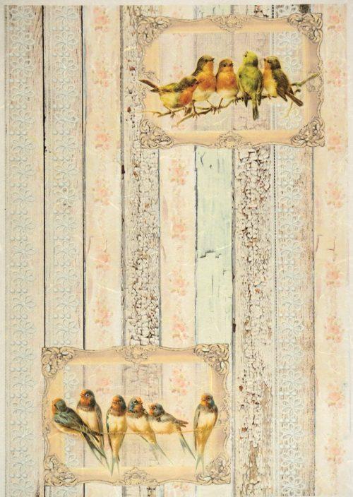 Rice Paper - Birds in frame