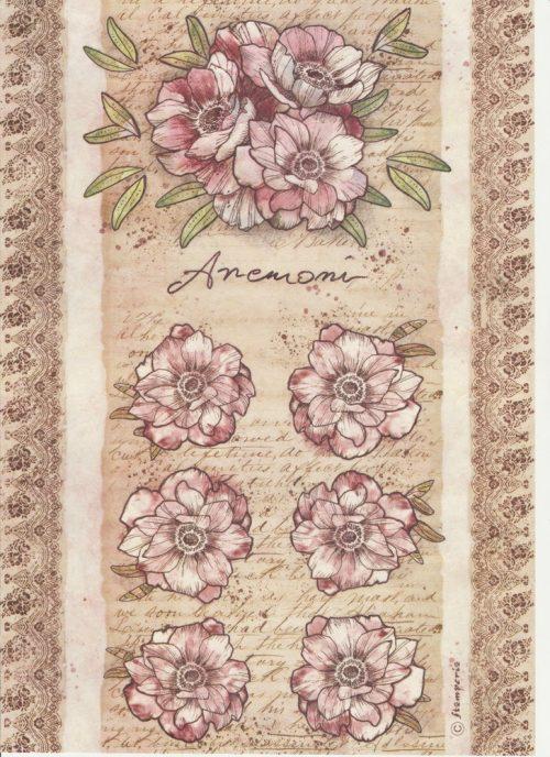 Rice Paper -  Anemone