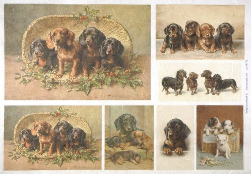 Rice Paper - Puppies, dogs