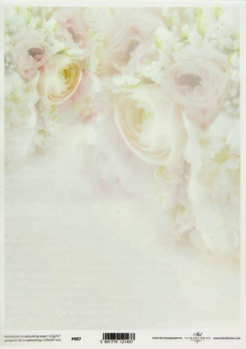 Translucent/Vellum Paper - Pale Roses