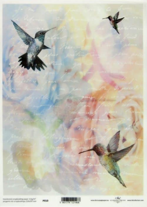 Translucent/Vellum Paper - Hummingbird