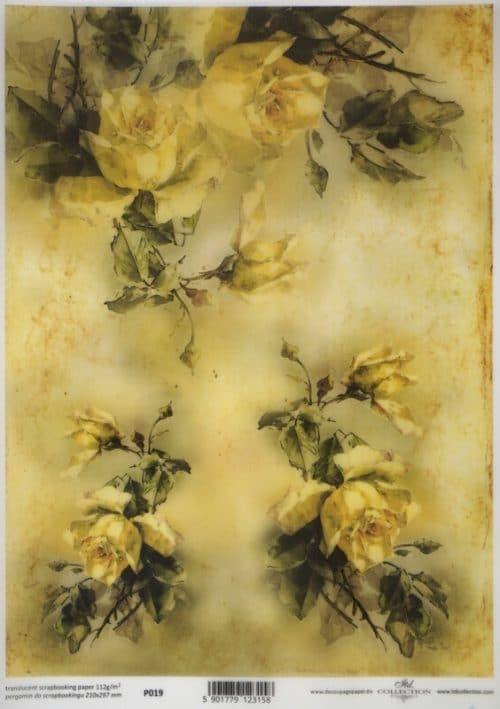 Translucent/Vellum Paper - Yellow roses