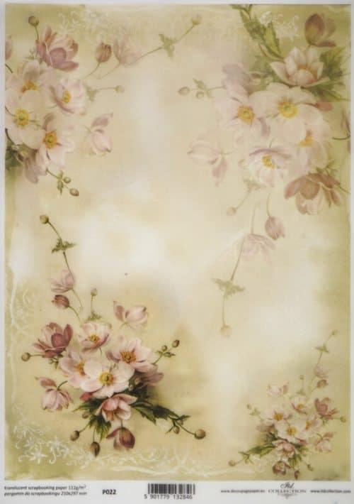 Translucent/Vellum Paper - Blossom white