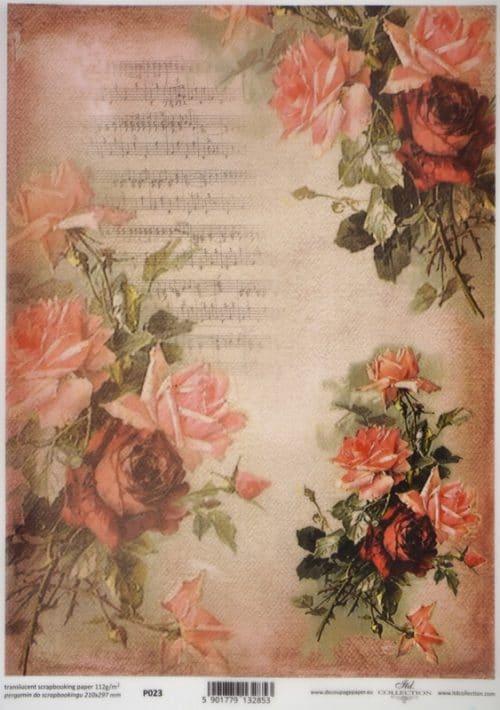 Translucent/Vellum Paper - Red roses
