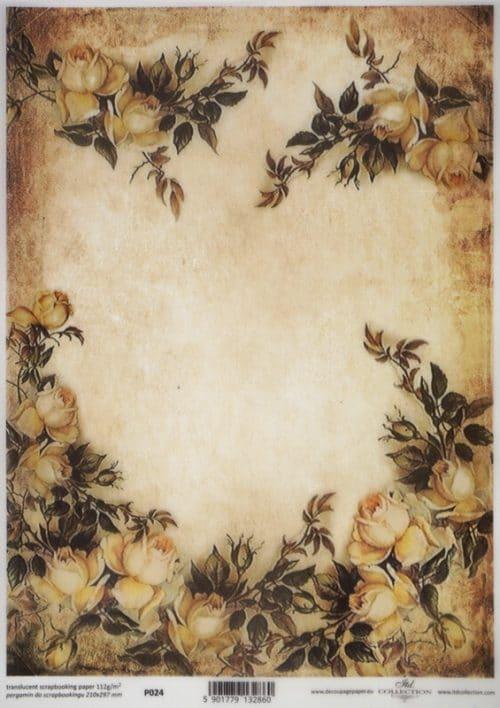 Translucent/Vellum Paper - White roses