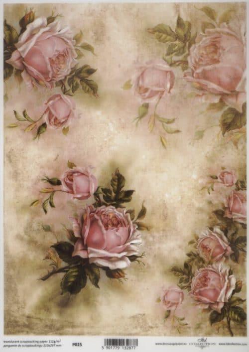 Translucent/Vellum Paper - Roses