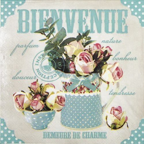Lunch Napkins (20) - Bienvenue