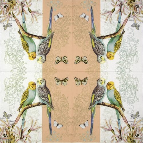 Paper Napkin - Budgies coral