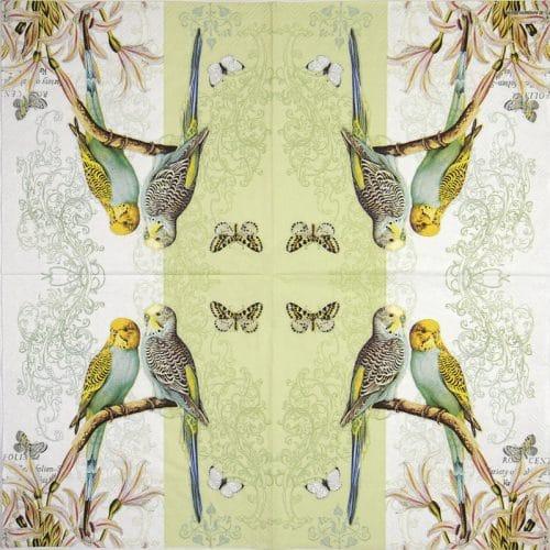 Paper Napkin - Budgies green