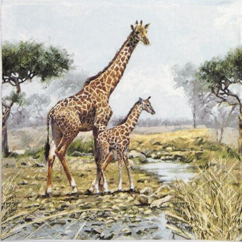 Lunch Napkins (20) - Giraffes