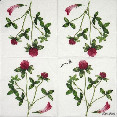 Paper Napkin - Red Clover