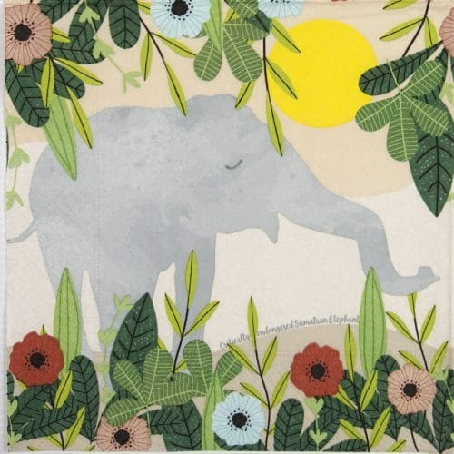 Lunch Napkins (20) - Sumatran Elephant