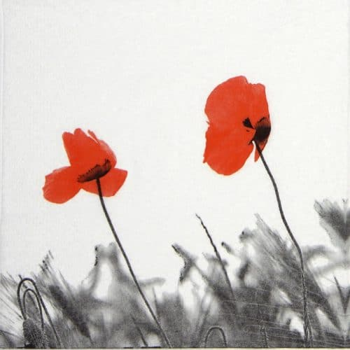 Paper Napkin - Two poppies