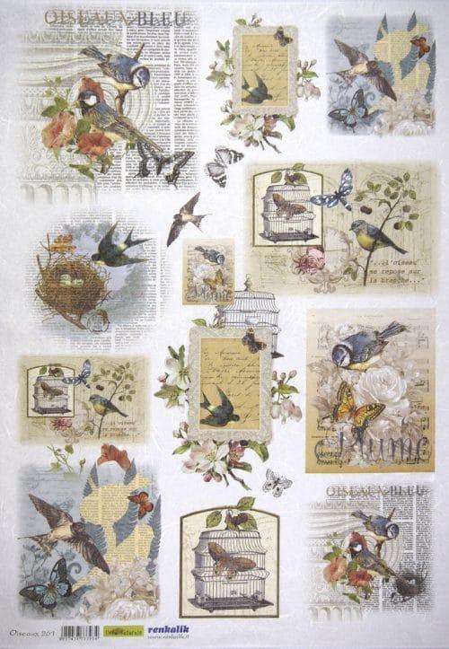 Rice Paper - Oiseaux