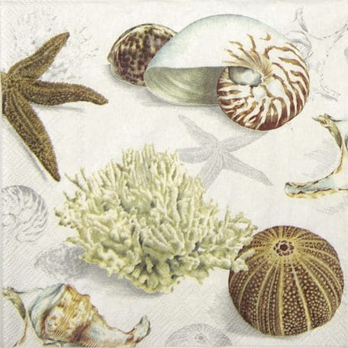 Lunch Napkins (20) - Clams at the Beach cream