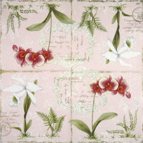 Paper Napkin - Orchid Light Rose