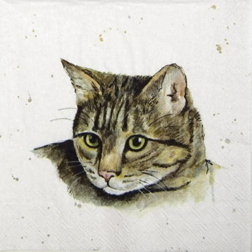 Paper Napkin - Farmfriends cat