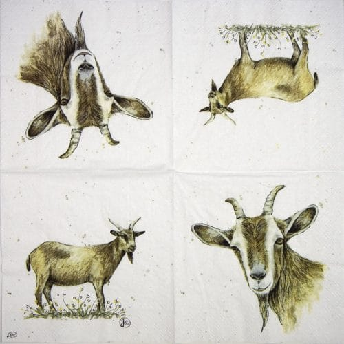Paper Napkin - Farmfriends goat