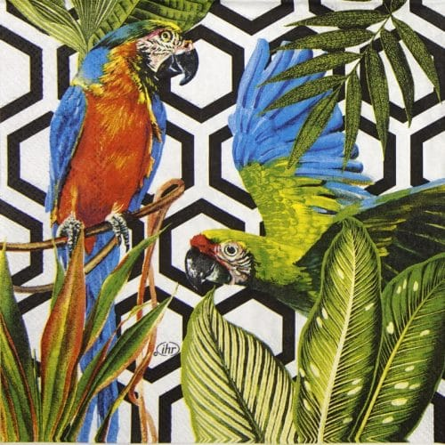 Paper Napkin - Tropical Parrots black