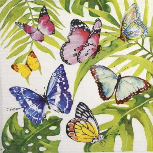 Cocktail Napkin - Carola Pabst: Tropical Butterflies