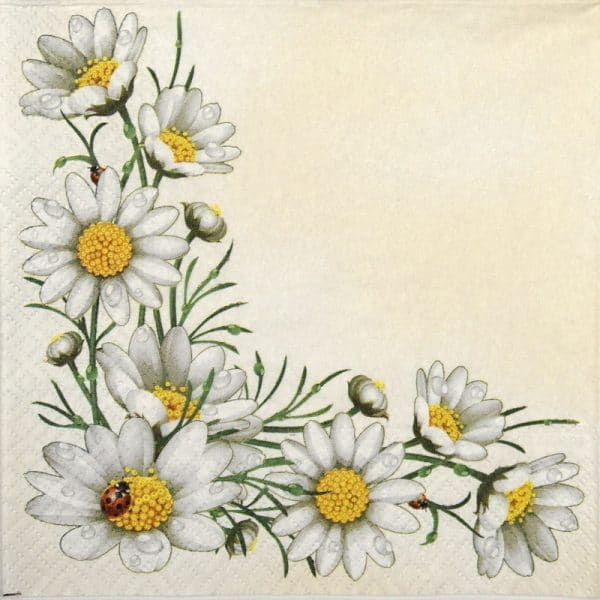 Lunch Napkins (20) - Bunch of Marguerites