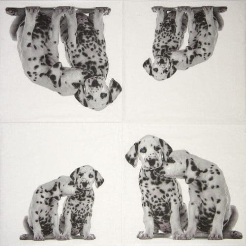 Lunch Napkins (20) - Dalmatians