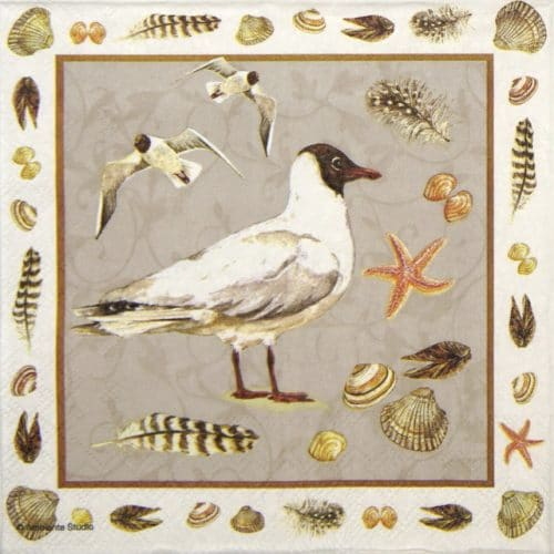 Paper Napkin - Black headed seagull sand