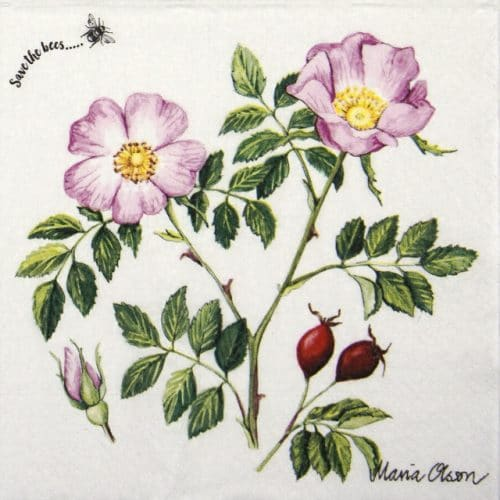 Paper Napkin - Dog rose