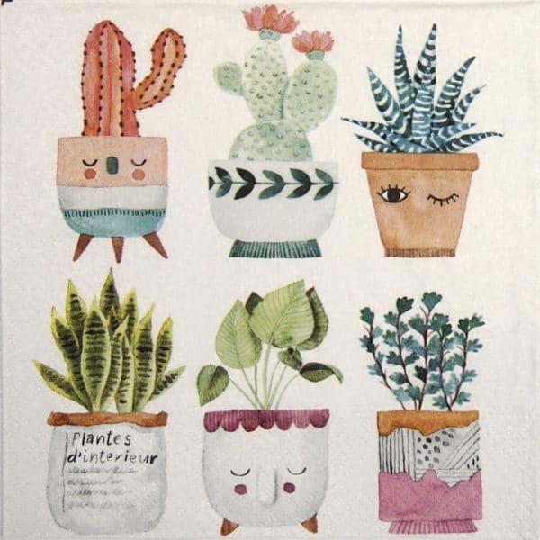 Paper Napkin - Plantes d´interieur