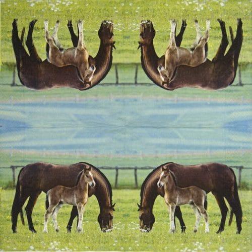 Paper Napkin - Pairs of Horses