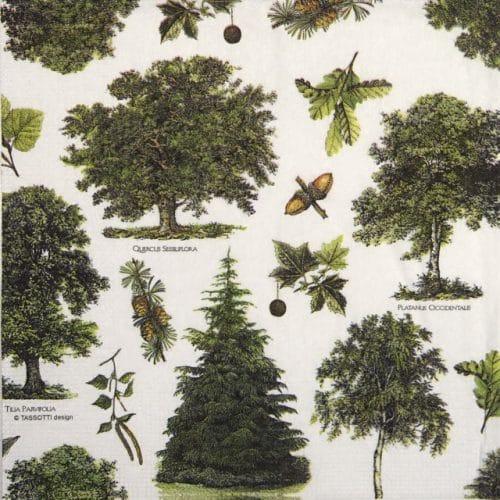 Paper Napkin -  Tassotti: Alberi