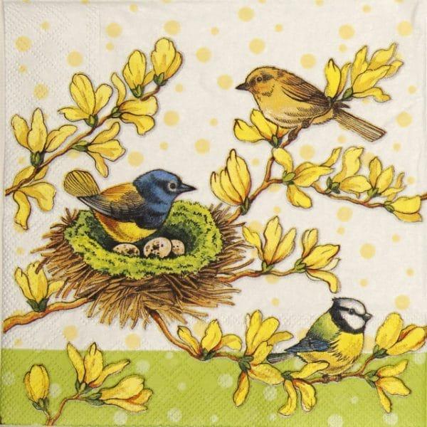 Paper Napkin - Birds on Forsíthia