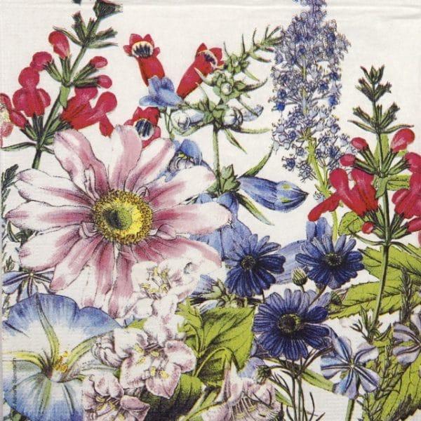 Lunch Napkins (20) - Adriana Sanmartin: Floriculture
