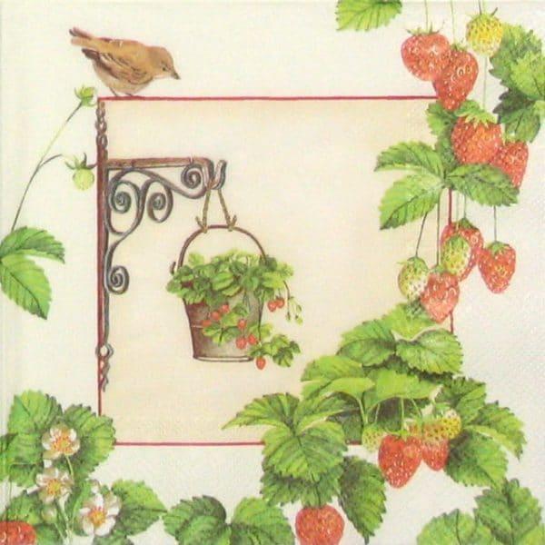 Paper Napkin - Hanging Fruit