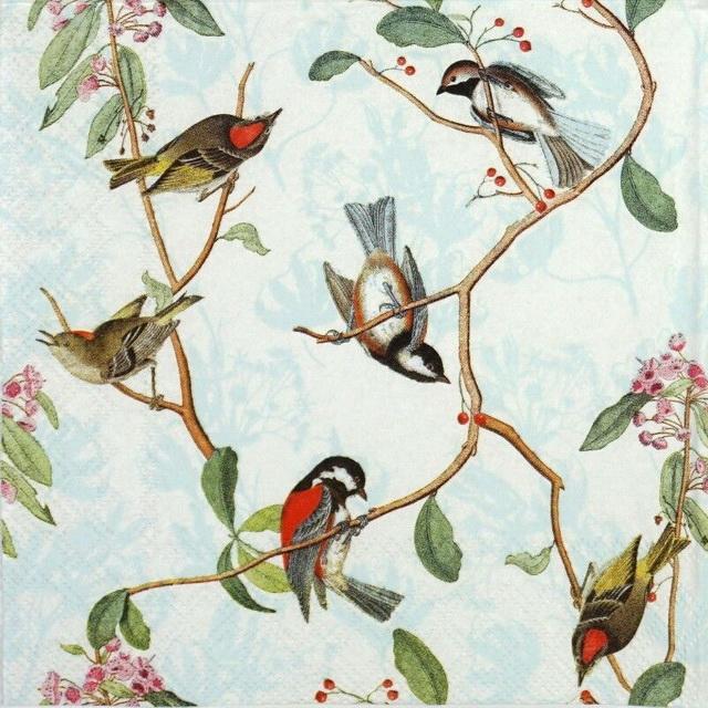 Paper Napkin - Birdsong