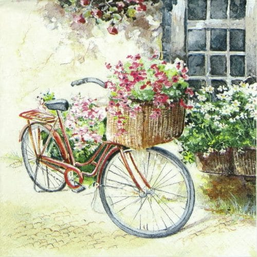 Lunch Napkins (20) - Flower Bike
