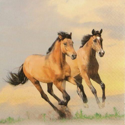 Paper Napkin - Wild Horses