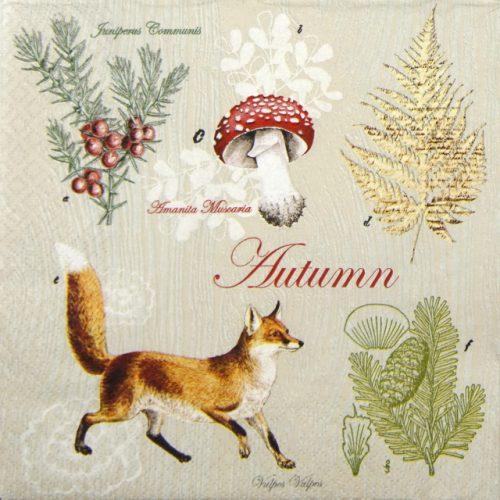 Paper Napkin - Fox in Autumn
