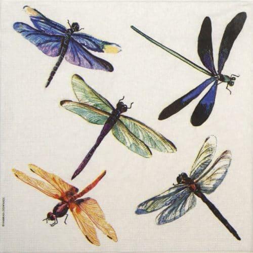 Paper Napkin - Namrata Deshpande: Libelula