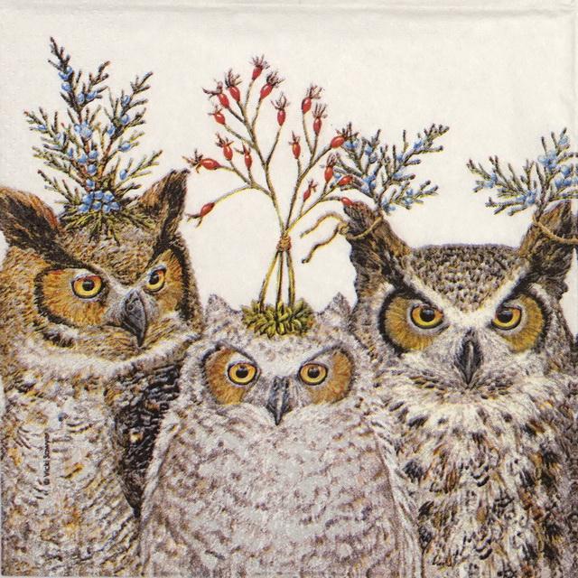 Cocktail Napkin - Vicki Sawyer: Holiday Hoot Owls