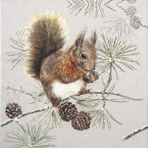 Cocktail Napkins (20) - Squirrel in Winter
