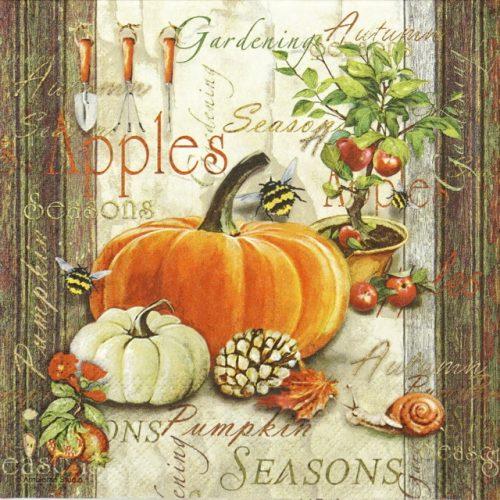 Lunch Napkins (20) - Autumn Gardening