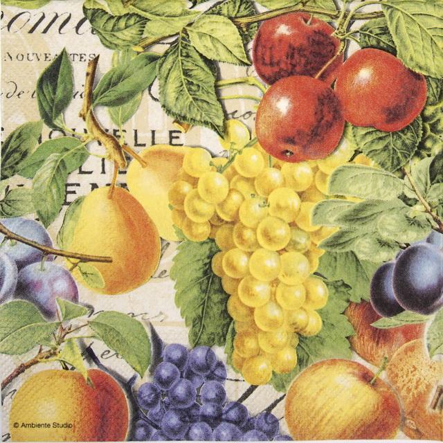 Cocktail Napkins (20) - Autumn Fruits