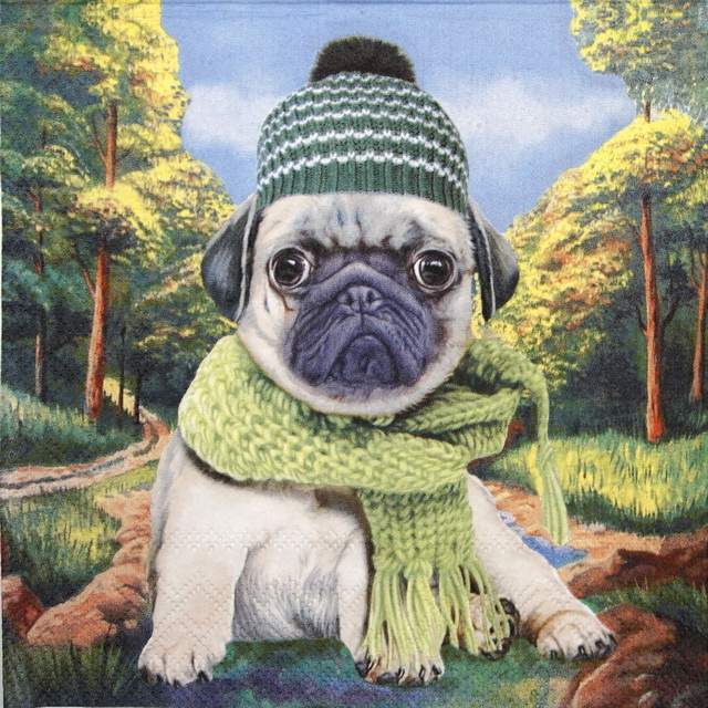 Lunch Napkins (20) - Autumn Pug