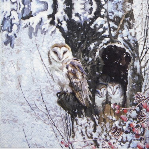 Lunch Napkins (20) - Barn Owl