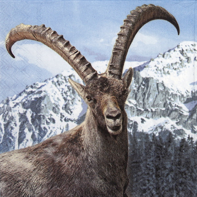Lunch Napkins (20) - Capra Ibex